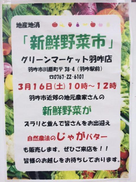 3/16(土)『新鮮野菜市』に出品&出店します