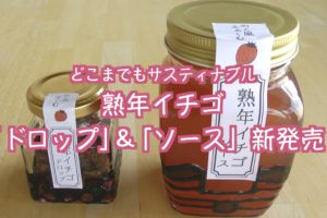イチゴの新商品【熟年イチゴ ドロップ&ソース】を発売します!