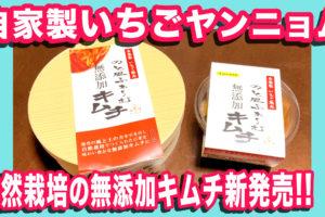 自家製いちごヤンニョム【無添加キムチ】新発売!